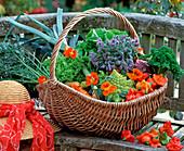 Korb mit diversen Gemüsesorten