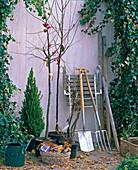 Geräte zu Gehölzpflanzung