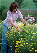 Junge Frau schneidet Blumen