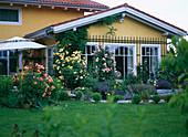 Hausansicht mit Rosa / Kletterrosen gelb und rosa