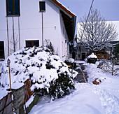 Haus mit verschneitem Garten
