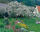 Frühlingsgarten mit Blühenden
