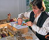 Samentüten nach Aussaattermin in Karteikasten ordnen