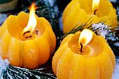Gelbe Kerzen im Rauhreif
