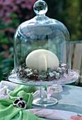 Glasschale mit Entenei im Nest aus Zweigen, Efeublättern