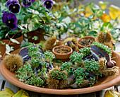 Alte Gartenkinderhandschuhe mit Erde gefüllt und in die Löcher Kresse aussäen