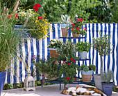 Balkon mit Bespannung in blau / weiß gestreift mit pflegeleichten