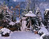 Balkon IM Winter mit ILEX AQUIFOLIUM,Taxus BACCATA