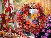 Herbstkranz,Rosa / Hagebutten,Prunus / Schlehen, Physalis / Lampionblume, Erica / Heide