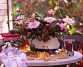 Gerbera, Datura / Stechapfel, Rosa / Hagebutten und Rosen,