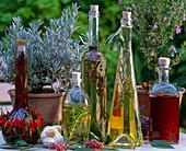 Herbal oil and herbal vinegar, lavandula (lavender), rosemary