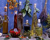 Kräuteröl, Salvia / Salbei, Calendula / Ringelblumen, Capsicum / Chili, Thymus / Zitr
