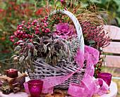 Korb mit Pernettya mucronata / Torfmyrte / Salvia tricolor / Salbei, Brassica / Zie