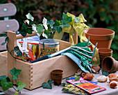 Gerätekiste als Geschenk für Gärtner mit Hedera / Efeu,