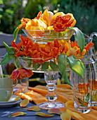 Glasetagere mit Tulipa 'Ad rem' u. 'Parrot' / Tulpen