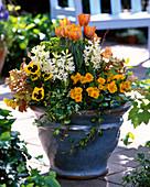 Bunt bepflanzter Frühlings-Topf