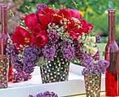 Tulipa 'Crispa' / Fransentulpen, Syringa 'Ludwig Späth' / Flieder,