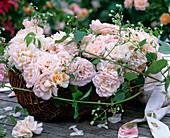 Rosa 'Bordure Nacree' / kleinblütige Rose (Delbard), Clematis