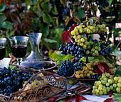 Metalletagere und Tablett mit Vitis / Weintrauben