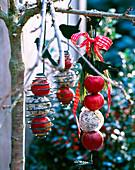 Futterstation mit Malus / Äpfeln und Meisenknödeln