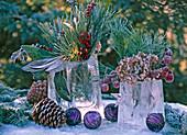 Eisblöcke als Vasen, Pinus / Kiefer und Zapfen