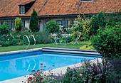 Swimmingpool, kleine Sitzgruppe auf dem Rasen, Beet mit Rosa (Rosen), Alchemilla (Frauenmantel), Leucanthemum (Margeriten), Nepeta (Katzenminze) un