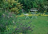 Kleine Sitzgruppe auf dem Rasen, Beete mit Alchemilla (Frauenmantel) u nd Anchusa (Ochsenzunge)