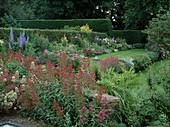 Centranthus ruber 'Albus' 'Coccineus' (weiße und rote Spornblume), Blick auf buntes Staudenbeet und Rasen