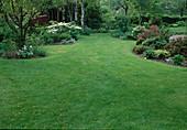 Rasenfläche mit geschwungenen Beeten