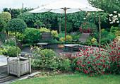 Runde Holz-Terrasse mit Liegen unter Sonnenschirm, Beet mit Rosa (Rosen), Lychnis coronaria (Vexiernelke), Buxus (Buchs) und andere Gehölze, Ligustrum (Liguster-Staemmchen) im Holzkuebel