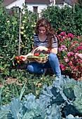 Frau pflückt Tomaten (Lycopersicon), blühende Godetia (Sommerazalee), Kohlpflanzen im Beet