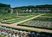 Der Schlossgarten von Villandry : Kieswege, Gemuesebeete eingefasst mit Hecken aus Buxus (Buchs), Rosa (Rosen) Staemmchen und Sommerblumen Rabatte