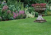 Steinschale mit blühender Hauswurz auf gepflegtem Rasen vor Blumenbeet