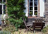 Wisteria (Blauregen) und Solanum dulcamara (Bittersuesser Nachtschatten) am Haus, Erigeron karvinskianus (Spanisches Gänseblümchen) im Topf, Sitzgruppe aus Holz