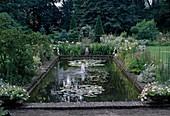 Architektonischer Gartenteich mit gemauerter Einfassung aus Klinker, Nymphaea (Seerosen), Beet mit Stauden, Blick auf formgeschnittene Koniferen
