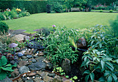Helleborus argutifolius, Salvia officinalis, Kleiner Wassergarten, Rasenfläche mit Sitzgruppe, Hecke als Abtrennung