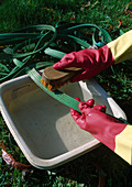 Gartenschlauch säubern