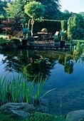 Sitzplatz auf Holzdeck am Teich , Agave attenuata, Acer palmatum (Fächerahorn), Robinia 'Umbraculifera' (Kugelrobinie), Buxus (Buchs), Hecke als Sichtschutz