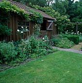 Beet mit Geranium (Storchschnabel), Rosa (Rose) am Gartenhaus, Wisteria, Schizophragma hydrangeoides (Spalthortensie) berankt das Dach
