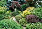 Japanischer Garten mit Acer palmatum 'Dissectum Garnet' , Acer japonicum 'Aureum' , Rhododendron , Buxus, Steinsäule