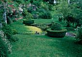 Garten mit kleinem Teich Myriophyllum equaticum, Buxus (Buchs), Iris pseudacorus (Sumpfschwertlilie), Zantedeschia (Kalla), Erigeron (Spanisches Gänseblümchen), Ruta (Raute)
