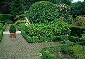 Formaler Garten eingefaßt mit Hecken aus Buxus sempervirens / Buchs, Vogeltränke, Prunus laurocerasus / Kirschlorbeer u.Hydrangea / Hortensie, Weg gepflastert mit Granit-Kopfsteinen
