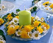 Tellerkranz aus Blüten vom Löwenzahn und Strauchmargerite