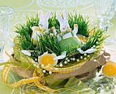 Weizengras in einer Schale