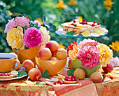 Rosa (rose), Prunus persica (peaches)