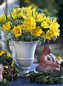 Amphore mit Tulipa 'Monte Carlo', Gypsophila / Schleierkraut,