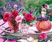 Rose, Lavandula (Lavender)