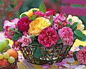 Rosa (rosa, pinke, gelbe Rosen)