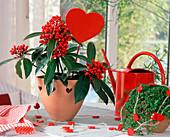 Skimmie und Bubikopf mit roten Herzen
