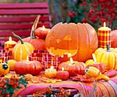 Cucurbita (pumpkin)